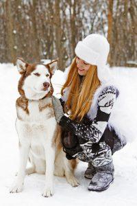 Huskys sind für den Winter bestens gerüstet. Kälteempfindliche Hunde brauchen aber beispielsweise einen Mantel. Foto: djd/Agila/Dasha Petrenko-Fotolia