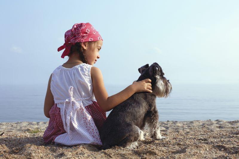 Hundegeburtstag: Geschenkideen für unsere treuen Begleiter
